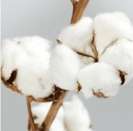 pannolini lavabili naturali cotone